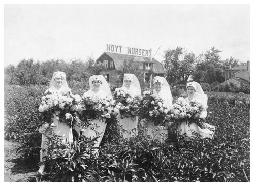 Selling peonies to raise money for the Red Cross in World War I. (Minnesota Historical Society)