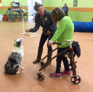 CIC fuses dog training and therapy.