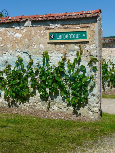 A Larpenteur Avenue street sign adorns a vineyard wall in Thomery, France. Photo courtesy of Larpenteur family